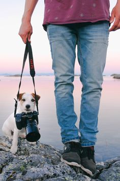 Panasonic GH5 Lumix, dog photography, a man and his dog on a lake. Summer sunset photography.