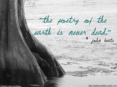 """The  poetry of the earth is never dead."" ~ John Keats"