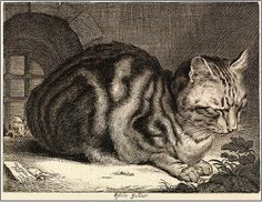 "Cats in Art and Illustration: Cornelis de Visscher (Dutch, 1586-1658). ""Cat Sleeping"" or ""The Large Cat."" 1657. Engraving."