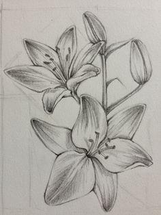 Flower Flower Sketch Pencil, Pencil Drawings Of Flowers, Flower Sketches, Pencil Art Drawings, Art Drawings Sketches, Pencil Sketch Drawing, Realistic Flower Drawing, Flower Drawing Tutorials, Amazing Drawings