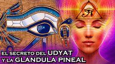 El ojo de Horus, también llamado Udyat, ha sido un símbolo que aparece en muchas…