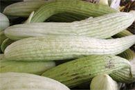 Καλλιέργεια Αγγουριάς Vegetables, Food, Essen, Vegetable Recipes, Meals, Yemek, Veggies, Eten