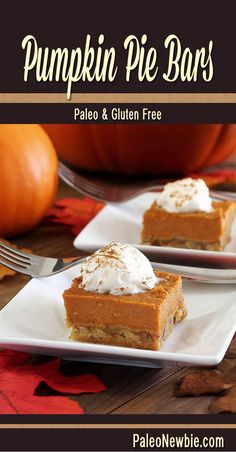 Creamy and rich pumpkin flavor with a nutty crust. An easy to make classic fall dessert! #paleo #glutenfree #pumpkin