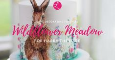 Harry the Hare in his edible wildflower meadow is a cake design that I am immensely pleased with. Here is a tutorial to show you how I created the flowers that adorn the sides of his cake. Cooking Classes For Kids, Cooking With Kids, Kid Friendly Dinner, Kid Friendly Meals, Map Cake, Easter Bunny Cake, Summer Meal Planning, Kids Meal Plan, Coffee Health Benefits