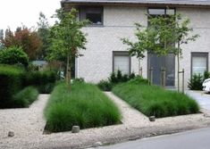 Information about front yard landscaping ideas, simple design for low maintenance garden and house flower small beds landscape with pictures Backyard Pool Landscaping, Modern Landscaping, Front Yard Landscaping, Landscaping Ideas, Front Gardens, Small Gardens, Outdoor Gardens, Modern Garden Design, Landscape Design