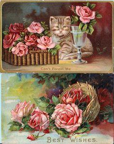 2 ROSES & Kitten Antique/ Vintage Postcards 1900s
