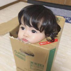 Cute Baby Meme, Cute Funny Babies, Baby Memes, Cute Baby Videos, Cute Kids, Cute Asian Babies, Korean Babies, Asian Kids, Cute Little Baby