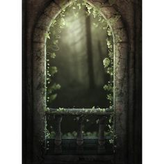 BeautifulDecay1.jpg ❤ liked on Polyvore featuring backgrounds
