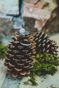 great way to display the rings! photo by Teale Photography http://ruffledblog.com/wintry-atlanta-wedding #rings #engagementring #wedding