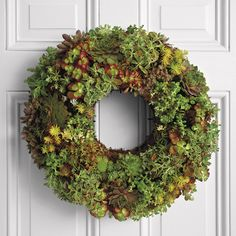 Wreaths aren't just for the Winter months. For Spring and Summer, check out this cool new Living Succulent Wreath. This handmade wreath features assorted sedum and sempervivum living succulents artistically placed into a moss-filled frame. Unlike the Winter evergreen wreaths that just dry up, fall apart and die, these wreaths continue to live, thrive, and grow in full sun and warm conditions with a nice soak from time to time. A very unique and decorative alternative.