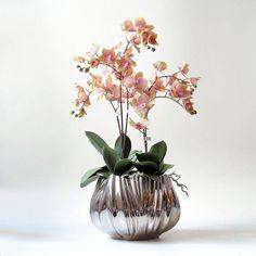 Arranjo com Orquídeas Malva 22830  Vaso de Porcelana  #lsselection