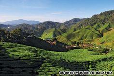 Tips for an Incredible Malaysia Roadtrip: | CNN Travel