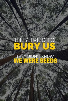 They tried to bury us, they didn't know we were seeds.