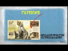Non-Fiction Text Features - YouTube