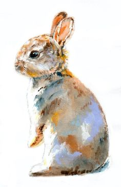 Doll Bunny Watercolor