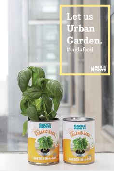 Gardening doesn't just take place outdoors. Herb Garden In Kitchen, Kitchen Herbs, Indoor Gardening, Container Gardening, Mushroom Kits, Grow Kit, Grow Organic, Diy Garden Projects, Garden Gifts