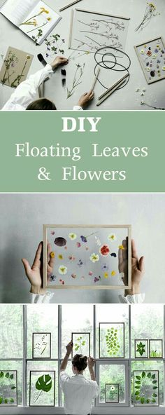 DIY Floating Leaves and Flowers in a Frame for decorating any room in the house