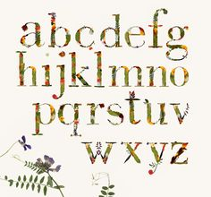 Experimental typography work done meticulously, dried flowers and leaves in books. Based on the Bodoni typeface. Typography Served, Typography Fonts, Graphic Design Typography, Flower Typography, Experimental Type, Flower Alphabet, Cool Lettering, Behance, Dried Flowers