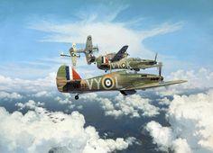 Tally Ho!, by Alex Hamilton (Hawker Hurricane Mk I)