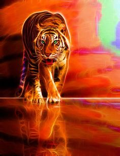 Walking Fractal Tiger.