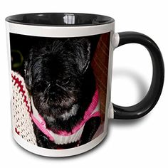 Jos Fauxtographee Realistic - Adorable Shiatsu Pug Pet Dog in Vibrant Pink and Green Sweater With Cute Hair Cut Close Up - 11oz Two-Tone Black Mug (mug_49536_4) 3dRose http://www.amazon.com/dp/B013525SP6/ref=cm_sw_r_pi_dp_JKaZvb15D0K6Y