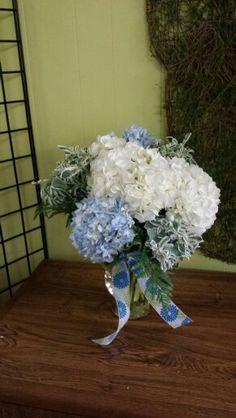 White and blue hydrangea