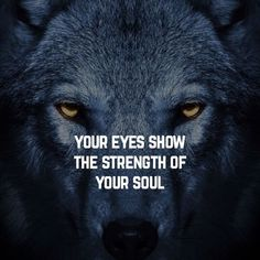 Lone Wolf Quotes, Lion Quotes, Animal Quotes, Wolf Pack Quotes, Wisdom Quotes, True Quotes, Words Quotes, Best Quotes, Sayings