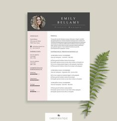 Resume Template Resume Template For Ms Word Cv By Modishresumes