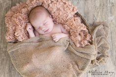 newborn photography, baby girl newborn, newborn in basket, newborn posing ideas http://www.melissamaryphotography.com http://www.facebook.com/MelissaMaryPhotography