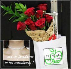 Met de feestdagen in het vooruitzicht !  Fleur De Lis Choker / Swarovski Kristal - 2rij - Gala of Feest à € 24,95