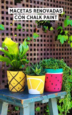 Flower Pot Art, Flower Pot Design, Painted Plant Pots, Painted Flower Pots, House Plants Decor, Plant Decor, Diy Arts And Crafts, Diy Crafts, Pottery Painting Designs