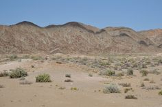 Richtersveld tour in Namaqualand by Pictures of scenery and geology information. Travel Tours, Tour Guide, Geology, Monument Valley, South Africa, 4x4, Succulents, Deserts, Scenery