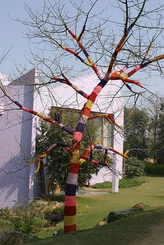 Crochet or wrap string/fabric around a tree    it's a tree!  wearing a sweater! by oursecretmission, via Flickr