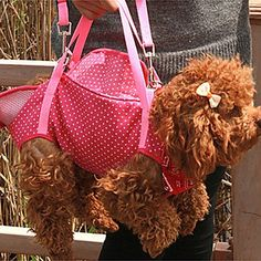 ViCreate Dot Print 4-Leg Soft Travel Portable Outdoor Carrier Bag for Pets Dogs (Assorted Colors) , Purple , M ** Read more  at the image link.