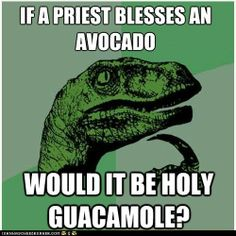 advice animals memes  - Animal Memes: Philosoraptor: Would It Be a Sin to Make That Guacamole?