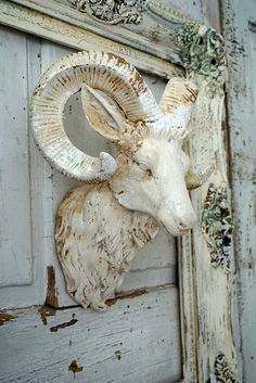 Ram head mount w/ frame wall hanging distressed rustic farmhouse painted large horn goat framed cream white with aged appearance home decor anita spero design  This set is painted and distressed in homemade paints that have an aged appearance. They are in a cream and white. The horns and frame have touches of gold.  These are aged using several techniques that give them an almost mossy look in small areas..however its not moss. Perfect for any rustic, shabby, farmhouse. This is a very…