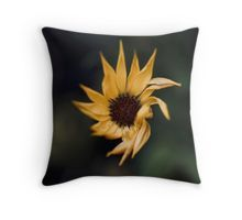 Beauty from the dark Throw Pillow