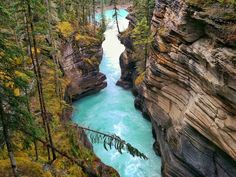 """""""I've heard about the mind-blowing the beauty of Athabasca Falls, but seeing it in person is better than I expected. I have a very deep respect for this place."""""""
