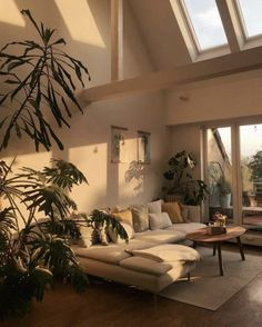 when-the-sun-hits-the-couch-whenthesunhits-sun-favoriteplace-home-interior-couch-urbanjungle-light-sunlight-plants-plants-plants/ SULTANGAZI SEARCH Dream Apartment, Small Apartment Bedrooms, Apartment Goals, Apartment Therapy, Aesthetic Room Decor, House Goals, Dream Rooms, My Dream Home, Home And Living