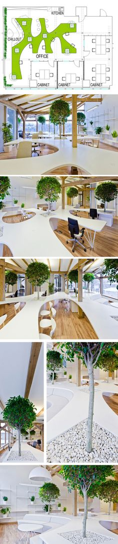 Office Greenhouse by OpenAD_OpenAD created this contemporary office in 2012 for a company located in Riga, Latvia. The space features an open plan and an indoor forest of trees and potted plants.