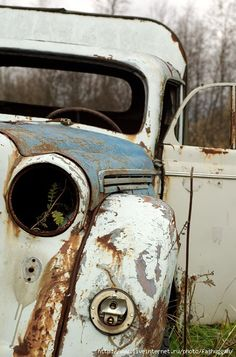 something extraordinary and beautiful...abandoned auto
