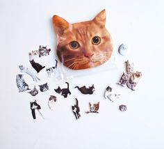 Kitty pouch of kitty stickers