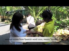 ~Thai Cooking with Coconut, What Is a Coconut? Cooking With Coconut Milk, Thai Cooking, Spanish Words, Southeast Asia, Monkey, Thailand, Tube, School, Travel