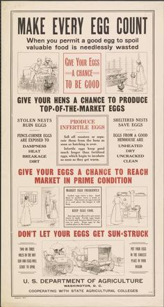 Make every egg count when you permit a good egg...