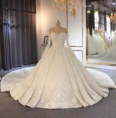 Princess Wedding Dresses, Elegant Wedding Dress, Dream Wedding Dresses, Bridal Dresses, Ballgown Wedding Dress, Princess Ball Gowns, Lace Wedding, Ball Gown Wedding, Winter Wedding Dresses