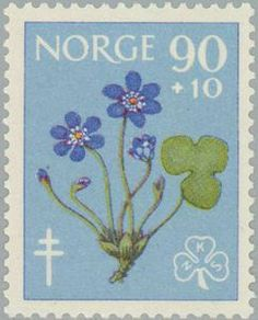 ◇Norway  1960   Tuberculosis Relief Fund- Flowers