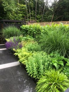 Designing & Building gardens for over 35 years -Foxcroft Outdoor Room Makers Jo-anne & Steven Foxcroft Canopy Outdoor, Outdoor Rooms, Plant Design, Garden Design, Landscape Architecture, Landscape Design, Uk Landscapes, Commercial Landscaping, Garden Canopy