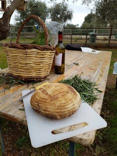 Picnic, Tray, Basket, Outdoor, Outdoors, Picnics, Trays, Outdoor Games, The Great Outdoors
