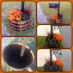 Whiskey Barrel Planter! I wanted to make the mailbox area look pretty, but didnt want the same old flowerbed so this is what I came up with.....removed the bottom of the barrel filled it halfway with soil planted some (Tulip Bulbs for next spring) and then planted the rest of the Fall Plants -Mum, ornamental pepper, Ornamental Cabbage  Kale, ivy, pansy and Red Fountain Grass. lots of color and beauty! ( Oh yeah a solar lanter for light).