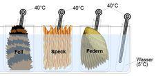 Versuche zur Wärme/Kälteisolierung, Wüste  pdf-Datei